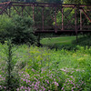 Hennipin Canal Path and Bike Trail / Cross Over Bridge / Illinois