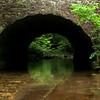 The Bridges at Blanchard Springs, Blanchard Springs, Arkansas