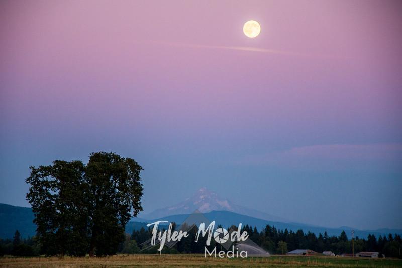 11  G Blue Moon and Hood