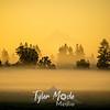 3  Misty Summer Sunrise