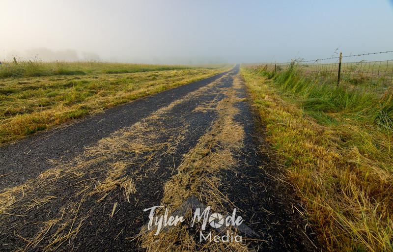 49  G Foggy Road