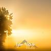 5  G Misty Trees Sunrise