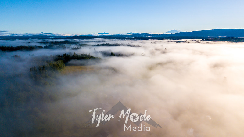 10  G Above Fog Drone MSH