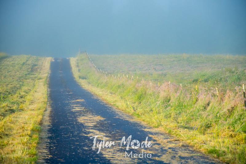 42  G Foggy Road