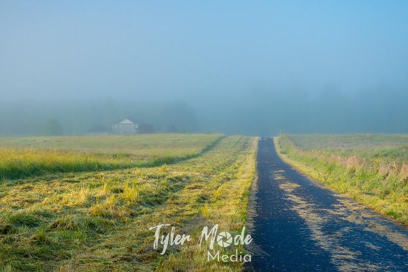 40  G Foggy Road