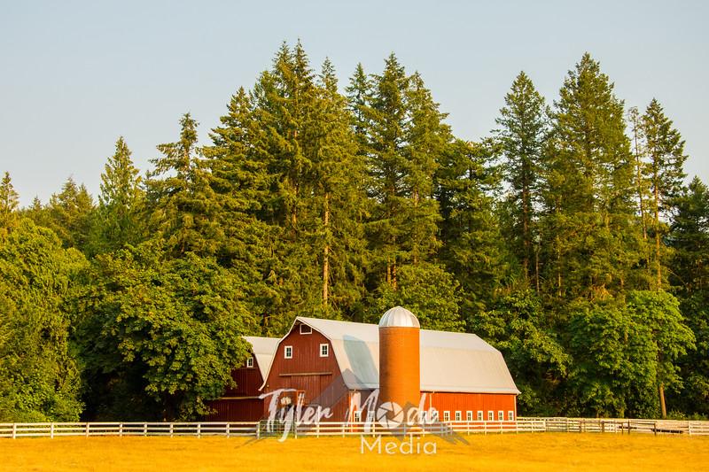 8 7 18 Summer Barn Wide