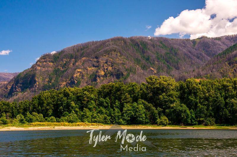 239  G Oregon Gorge Views