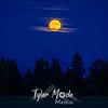 21  G Moonrise and Mt  Hood