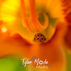 29  G Ladybug on Lily