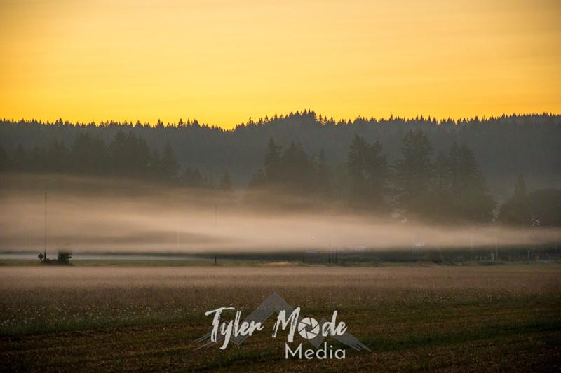 43  G Sunrise Mist