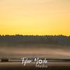 41  G Sunrise Mist