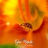 33  G Ladybug on Lily