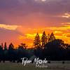 1  G Summer Sunset