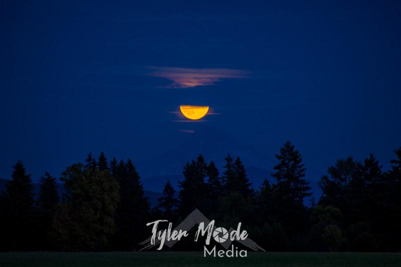 17  G Moonrise and Mt  Hood