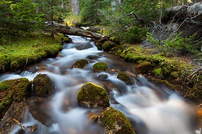Stream at Paradise Valley, Lake Louise Alberta