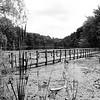 pond trails