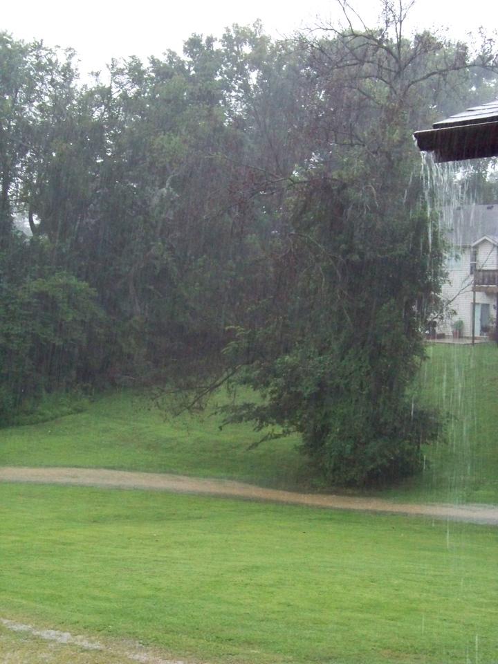 Stream flowing thru the yard