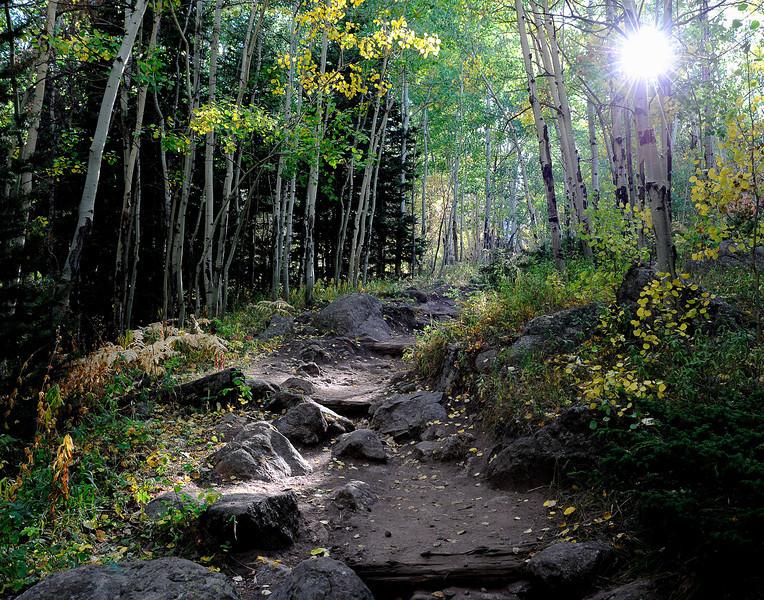 """Cub Lake Trail"" Rocky Mountain National Park"