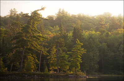 Panache Lake. Sudbury, Ontario.