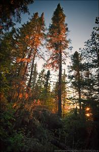 Neys Provincial Park, Ontario.
