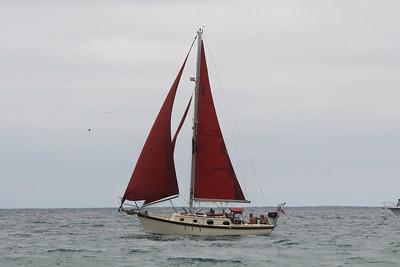Sailboat off Laguna Beach, Calif.