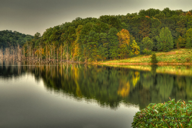 Reflects of Merrill Creek