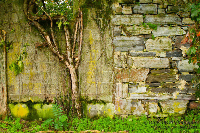 Old stone wall in Stewartsville