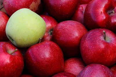 applesIMG_5806