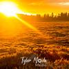 178  G Mt  Hood Sunrise
