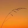 Sunset, White County, Arkansas
