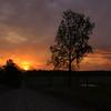Sunrise, Cherokee WMA, Arkansas