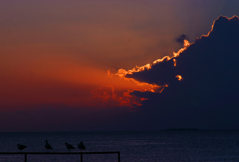 Sunset Key West Fl. Fall 2010