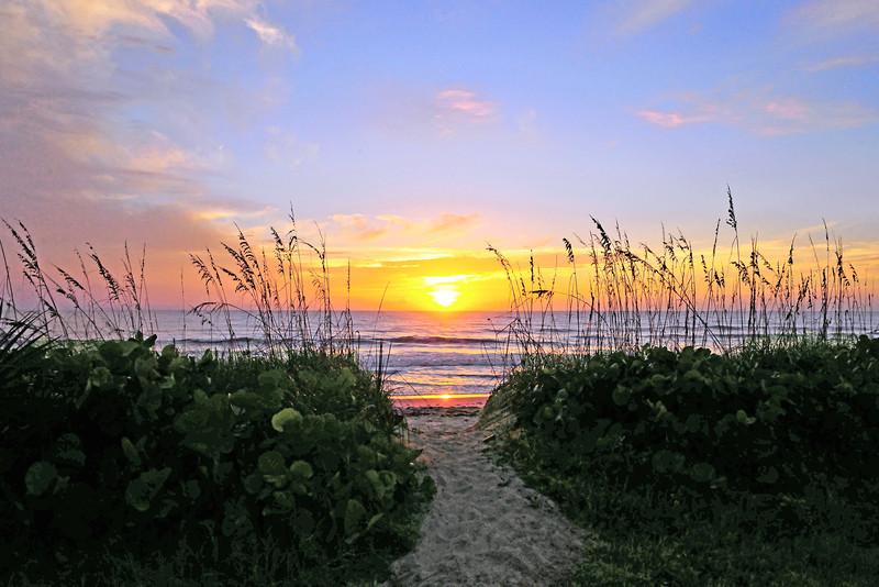 Sunrise across the Dunes<br /> Satellite Beach, Florida<br /> 222-2374d-tm-a