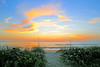 Sunrise across the Dunes<br /> Satellite Beach, Florida<br /> 192-7421-tmb