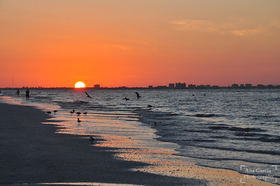 Sunrise in Sanibel Island, FL
