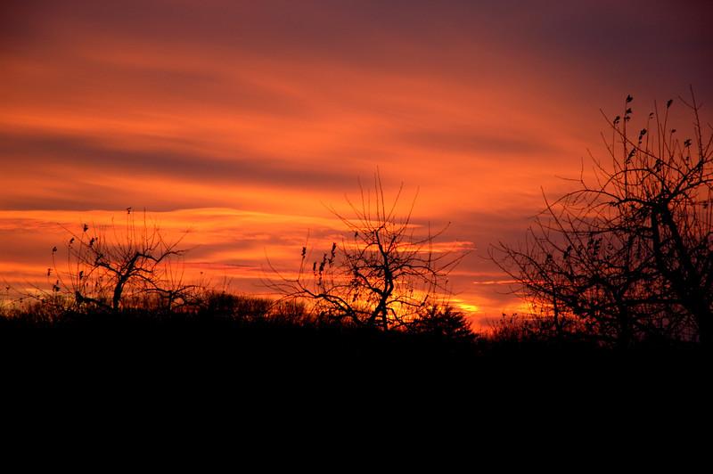 sunset2006-12-06_0002