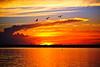 Sunrise <br /> Merritt Island, Florida<br /> 110-2882b