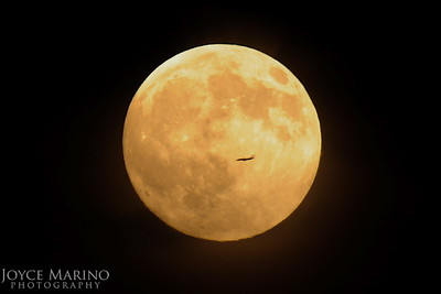 Plane flying over with full moon in background -- DSC_5283.