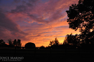 Spectacular summer sunset - # DSC_3563.