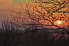 Winter sunrise over Somerset levels