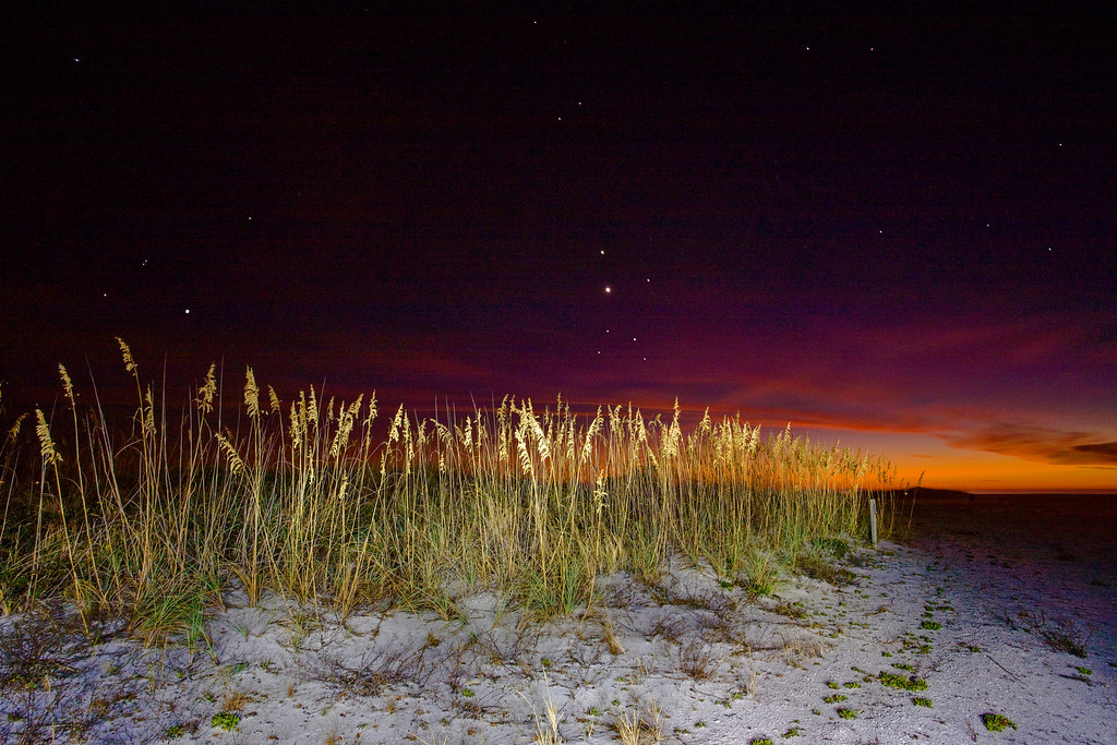 night shot with sea oaks lite by flashlight, and exposure blended with an earlier sunset shot