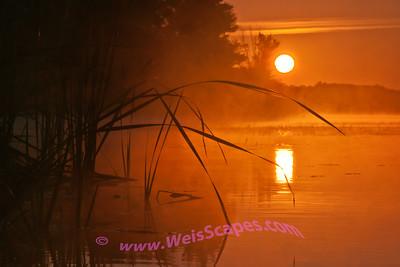 Sunrise at Stoney Creek.