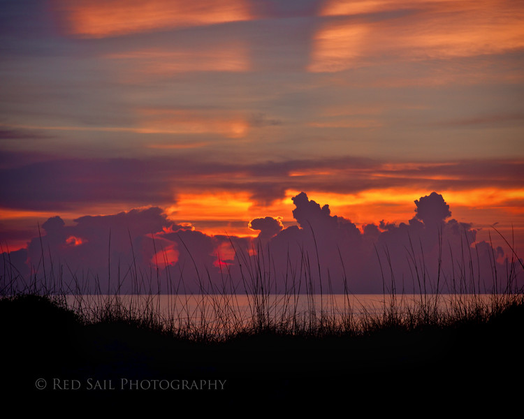 Sea Oats Sunrise