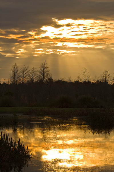 Late February sunset at Green Cay Wetlands, Palm Beach County, Florida