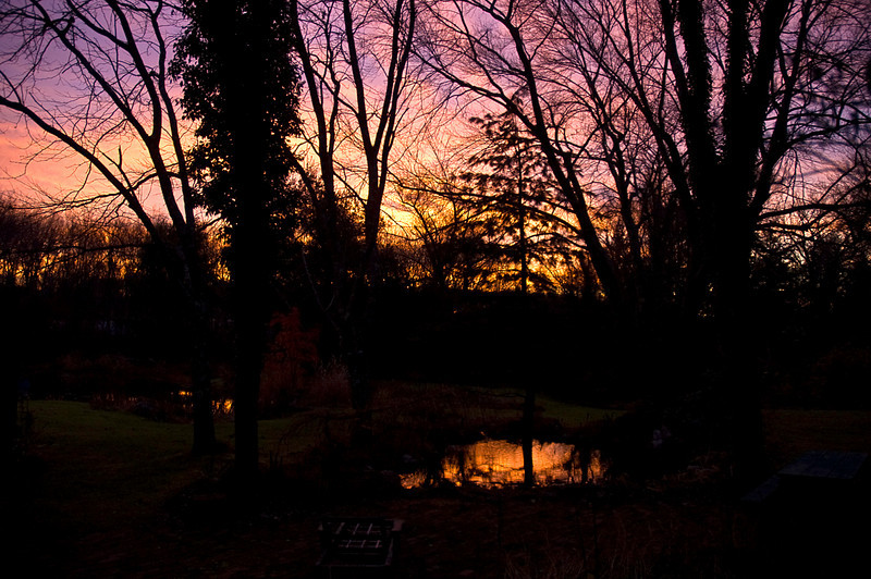 View from the kitchen window, dawn of the day before leaving our home of almost thirty-two years in East Haddam, CT