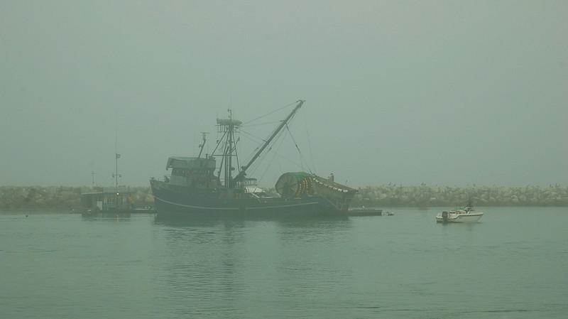 """Foggy sunrise with commercial fishing vessel in Dana Point harbor, CA named for Richard Henry Dana who wrote in """"Two Years Before the Mast"""" that this was the only romantic spot he saw in California on his 1835 visit.<br /> <br /> FunFact: Dana's laudatory descriptions of California were one of the wellsprings of the United States hunger for the territory of what was then Mexico."""