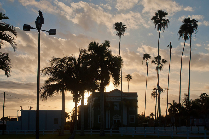 Sunrise over Bank of the Everglades building with black buzzard