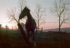Sunrise with horse somewhere near Gettysburg, PA, mid 70s Kodachrome scan