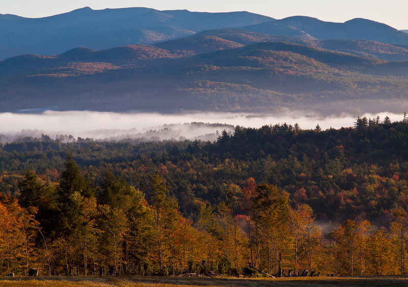 early morning in Campton NH.  I love the outline of the tallest trees in the fog.