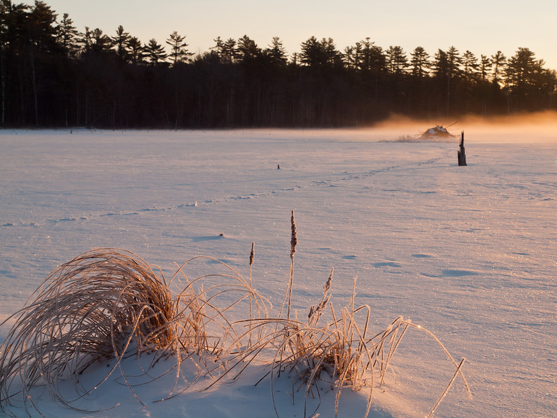 I had frozen toes by this time.  Just as the sun crested, the mist returned to cover the beaver lodge.  Hayes Marsh, Bear Brook State Park.